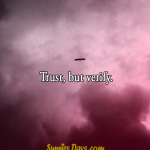 Trust, but verify. #quote #trust #confidence #people