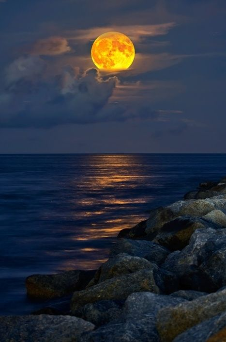 """""""I will never be a morning person, for the moon and I are much too in love."""" —Christopher Poindexter"""