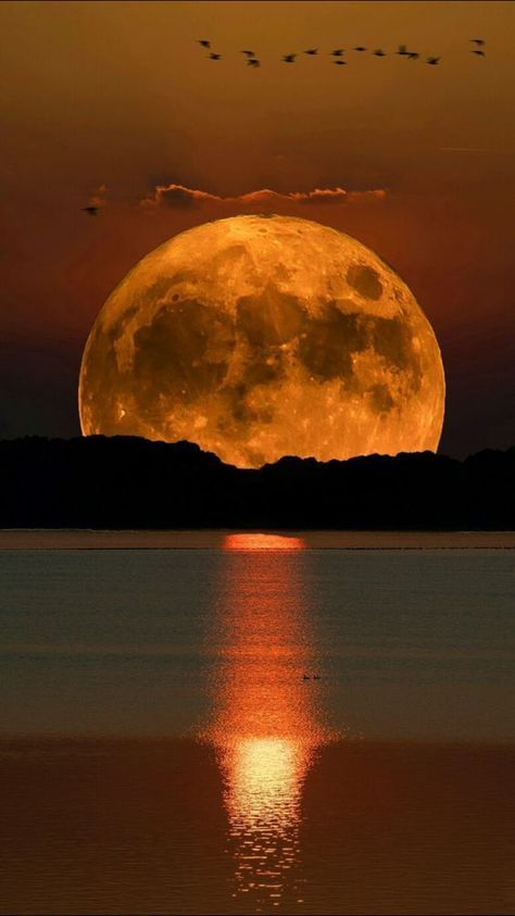 A legend says that the sun and the moon have always been in love, but that they could never be together, because the moon rises at sunset and the sun just at dawn. Thus, in His infinite goodness, God created the eclipse as proof that there is no impossible love.