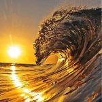 Ocean, gorgeous, amazingview, sunset, Dolphin, smartphonewallpaper, calm, wave, sea, Iphone, Samsung, HDwallpaper
