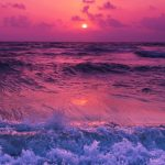 beach, gorgeous, amazingview, sunset, pink, smartphonewallpaper, calm, calm, sea, Iphone, Samsung, HDwallpaper
