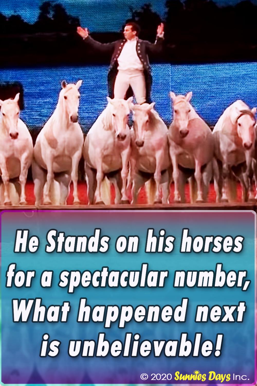 Spectacular, Horses, Show, Talent, Behind Scene, Amazing,